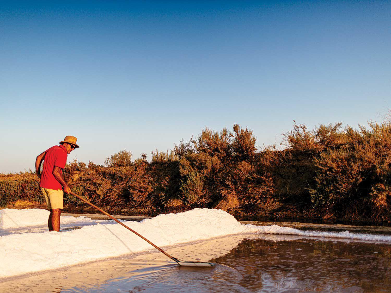 Jorge Raiado harvests salt in Castro Marim, Portugal.